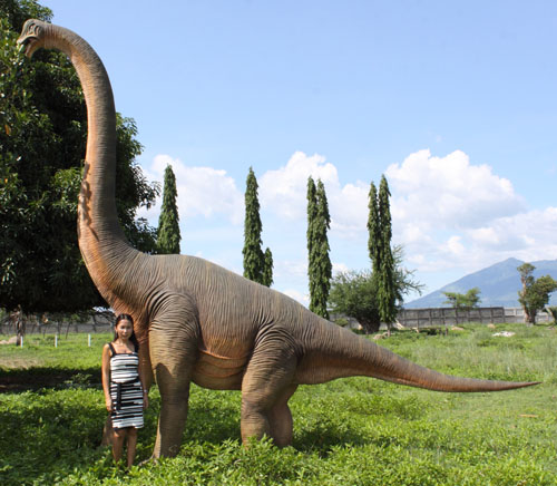 Brachiosaurus 15.5 Ft.