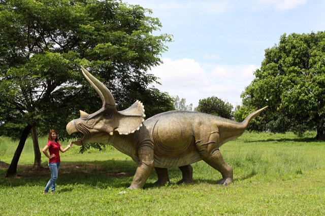 Giant Triceratops