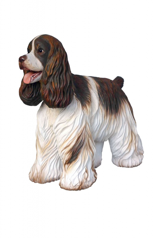English Cocker Spaniel