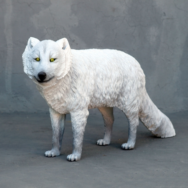 Arctic Fox White