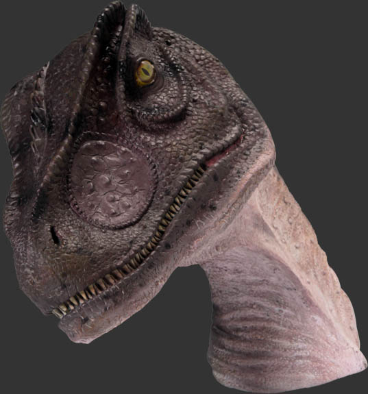 Allosaurus Head - Click Image to Close