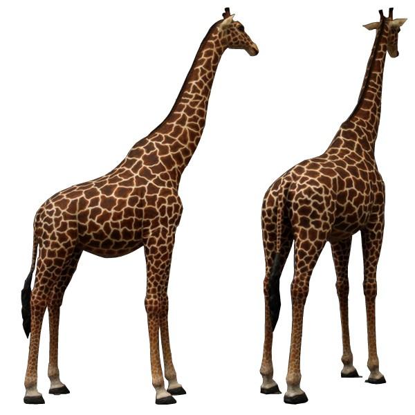 life size giraffe 18 ft 18ft adult giraffe statue. Black Bedroom Furniture Sets. Home Design Ideas