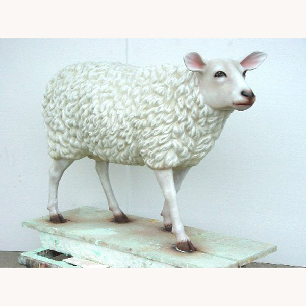 Realistic Sheep